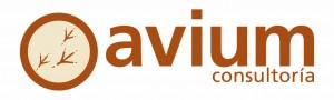 AVIUM_consultoria